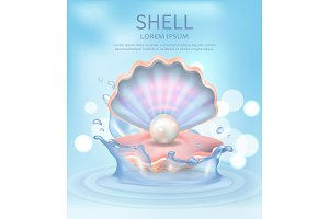 Shell Elegant Poster with Text Vector Illustration