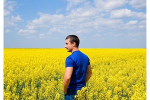 A man in a blue T-shirt is walking along the canola field