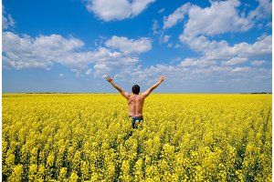 Free man in the field. The man raised his hands up. Field of flowering rape