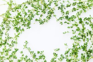 Overhead view of thyme leaves and twigs arranged in frame