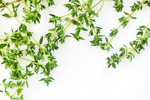 Fresh thyme twigs on white