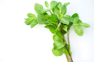Overhead view of fresh mint leaves on white background
