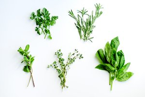 Fresh culinary herbs on white background