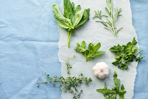 Fresh culinary herbs