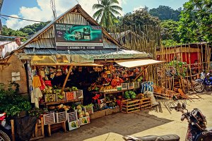 Tropical fruit shop