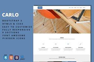 Carlo - Agency & Portfolio Template