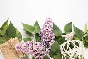 Background with Lilac on white table