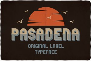 Pasadena typeface (Limited Offer)