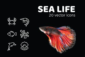 SEA LIFE - vector icons
