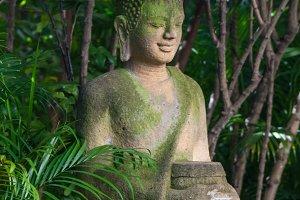 buddha statue in wat umong, chiang mai