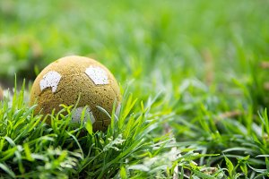Old ball in the grass