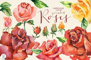 Aquarelle red watercolor roses