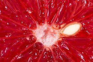 Grapefruit macro