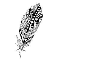 Polynesian Feather Illustration