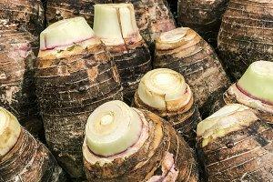 Taro stack in the market