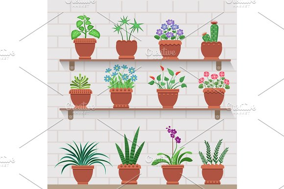 Indoor Plants on Shelves Attached to Brick Wall