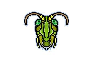 Grasshopper Head Mascot
