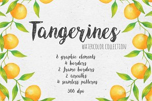 Tangerines. Watercolor collection