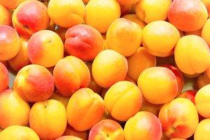 Apricots on farm market