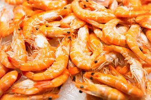 Red fresh shrimps at the market