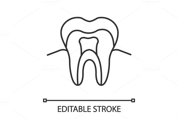 Tooth anatomical structure linear icon