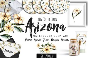 Arizona. Flower watercolor clip art.