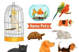 Big and small home pets set