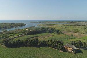 Tropical landscape with farmland, sea, sky.
