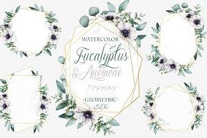 Eucalyptus Anemone Frames Clip Art