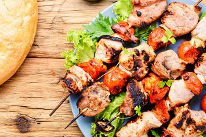 Appetizer kebab,grilled meat