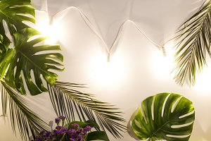 Tropical leaves and lanterns