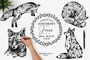 Hand Drawn Foxes Bundle- Clipart PNG
