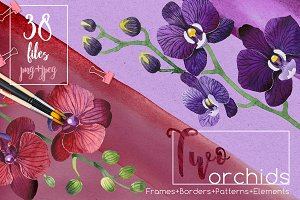 Two orchids PNG aquarelle set