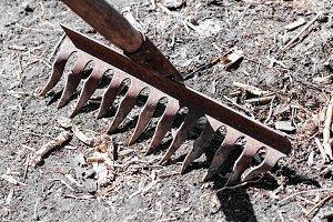 Old iron rake