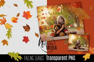 Fall Leaves Falling Transparent PNG