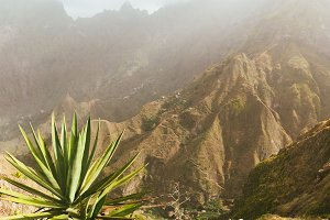 Incredible panoramic view of the steep mountain and trakking routes to green ravine. Huge agave plants in foreground in warm sunrays light. Santa Antao Island. Cape Verde