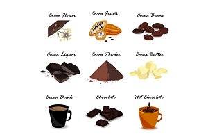 Super food with cocoa. Pod, beans, cocoa butter, cocoa liquor, chocolate, cocoa drink and powder. Vector set.
