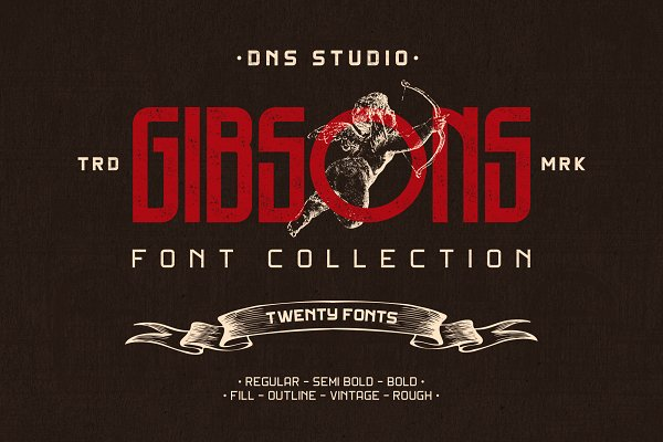 Display Fonts: DNS Studio - Gibsons Font Collection (Intro Sale)