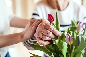 Hands of an old and young woman putting flowers in a vase.