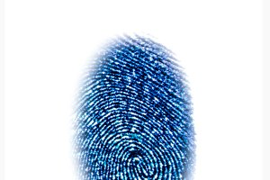 Blue fingerprint identification symbol isolated on white background in technology concept