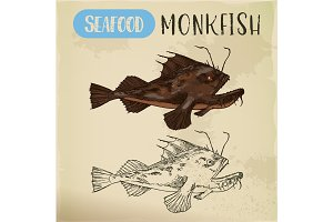 Monkfish or sea-devil, fishing-frog or fish sketch