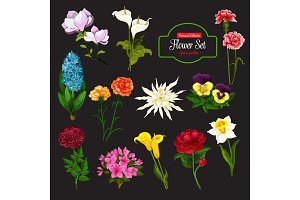 Flower icon with bunch of spring flowering plant