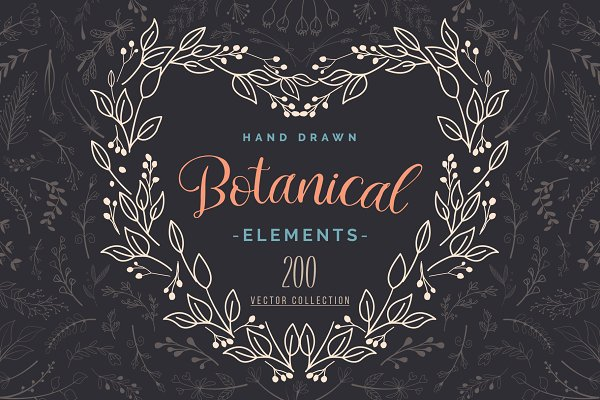 Illustrations and Illustration Products: Pixavics - Hand Drawn Botanical Vector Elements