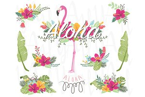 Floral Flamingo Collections