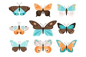 Colorful butterflies with blue orange wings