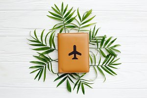 passport with plane on green palm