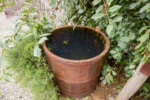 Wooden barrel filled with water
