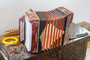 The accordion is in its own case