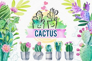 Cactus. Watercolor illustrations.