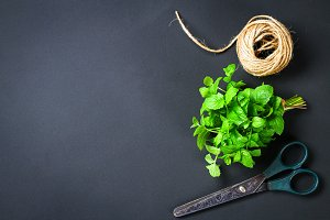 Fresh homemade green peppermint with rope twine and old scissors on a gray dark concrete table. top view